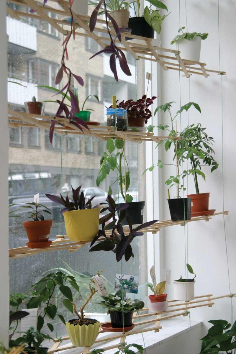 Diy indoor window plant shelf - diy (do it your self).