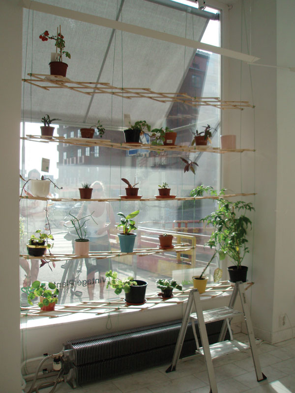 Byggstudio - How to hang plants in front of windows ...